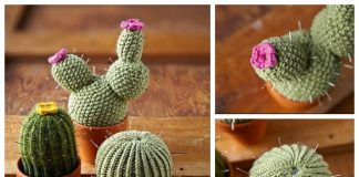 Knit Woolly Cacti Free Knitting Patterns
