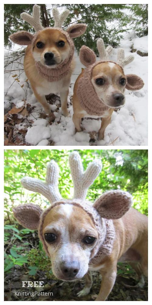 Knit Christmas Dog Deer Hat Free Knitting Patterns