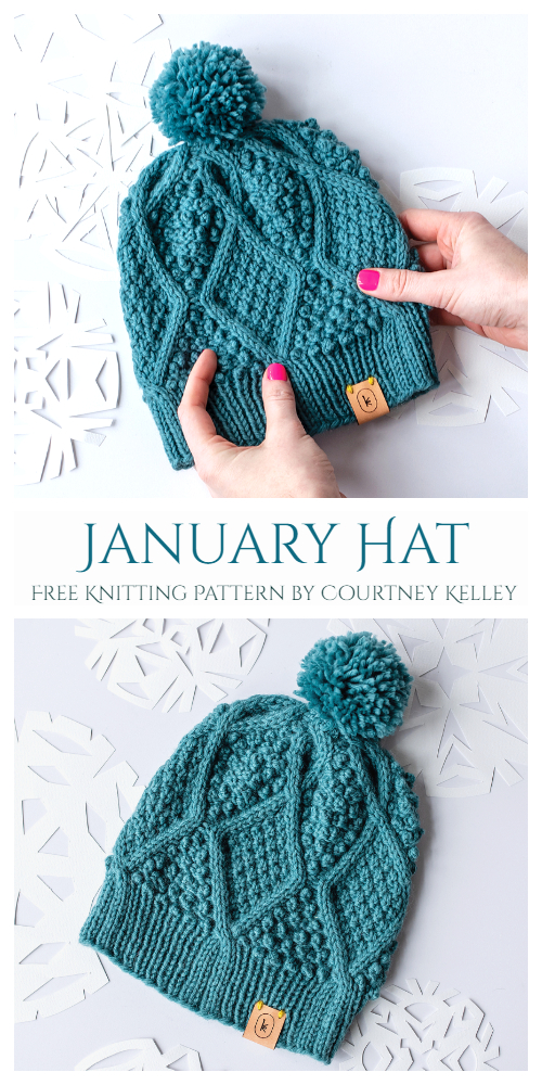 Knit Unisex January Hat Free Knitting Pattern