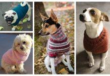 Knit Dog Sweater Free Knitting Patterns