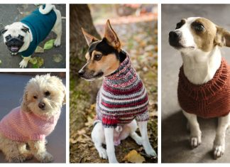Knit Dog Sweater Free Knitting Patterns