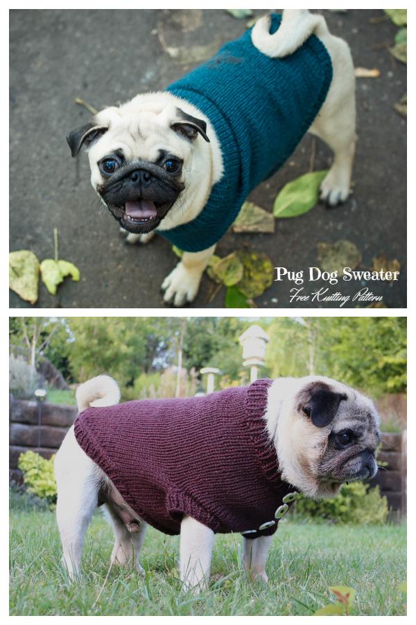 Knit Pug Dog Sweater Free Knitting Patterns