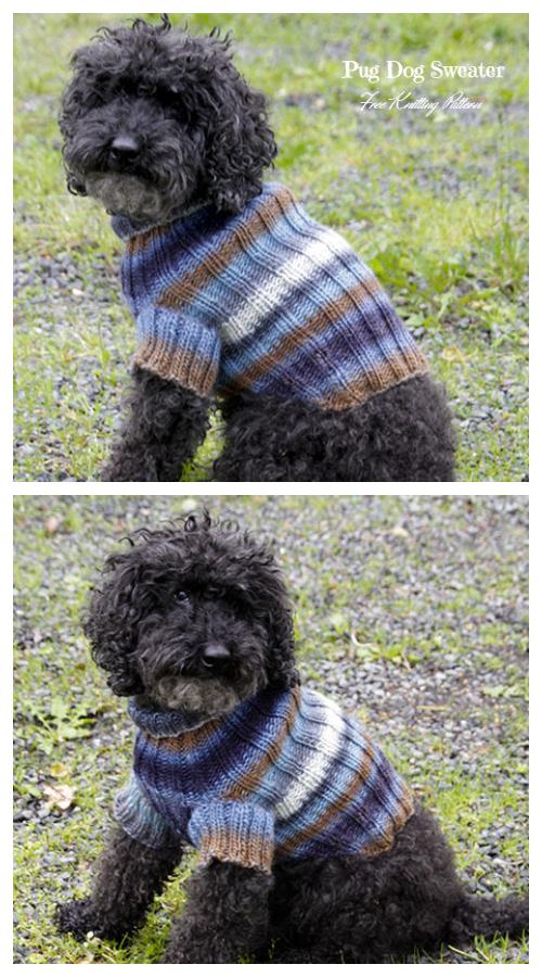 Knit Paws & Stripes Dog Sweater Free Knitting Patterns