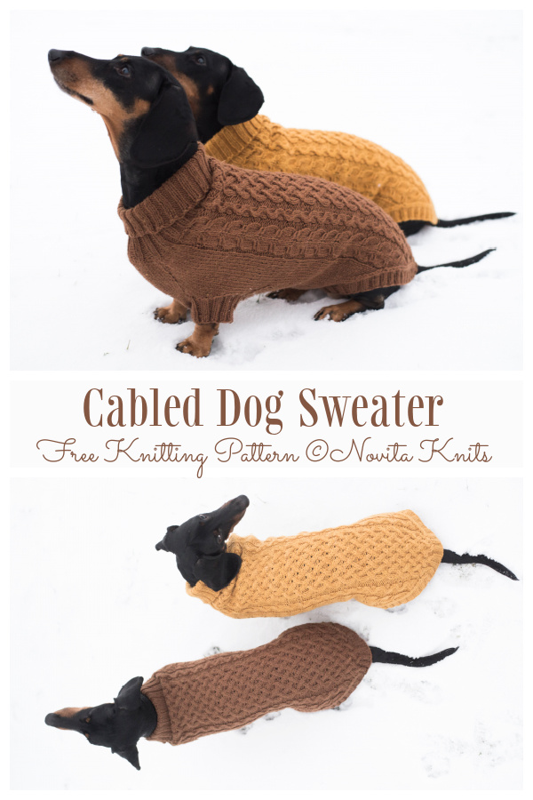 Knit Cabled Dog Sweater Free Knitting Patterns