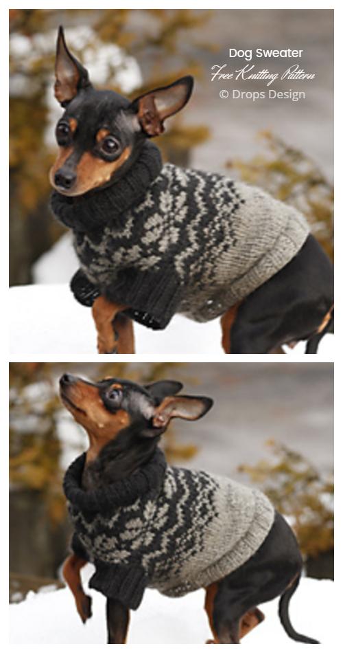 Knit Adventure Hike Dog Sweater Free Knitting Patterns