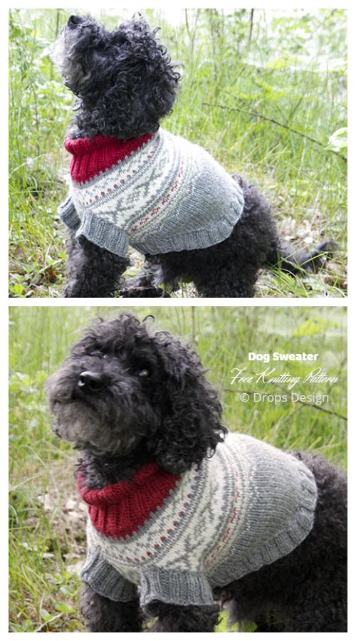 Knit Narvik Woof Dog Sweater Free Knitting Patterns