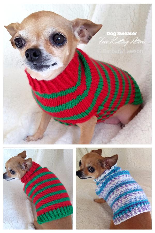 Knit Pebble's Dog Sweater Free Knitting Patterns