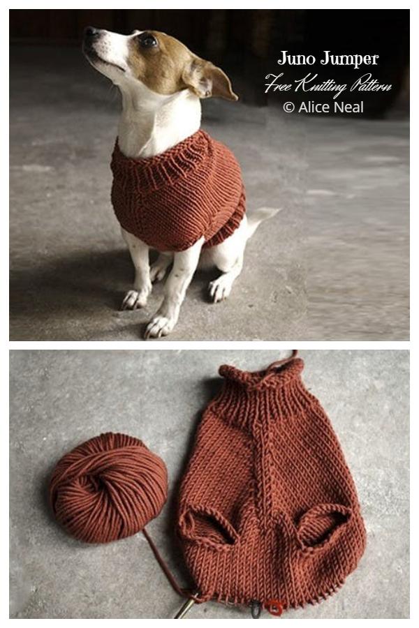 Knit Juno Jumper Dog Sweater Free Knitting Patterns