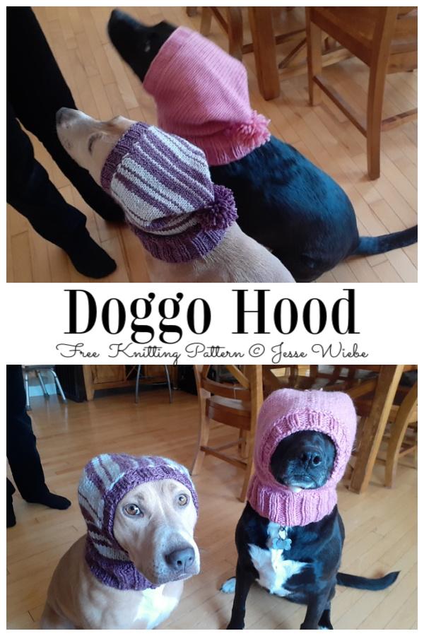 Knit Dog Hood Free Knitting Pattern