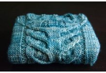 Stag-horn Cabled Baby Sweater Free Knitting Pattern